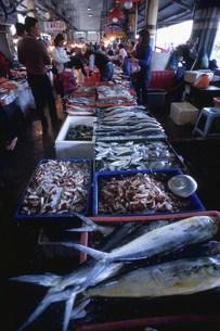 南方澳魚市場の写真素材 [FYI04083354]