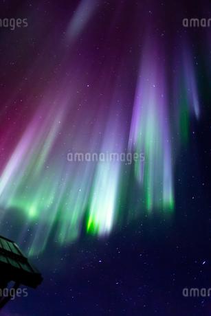 アラスカ フェアバンクスのオーロラの写真素材 [FYI04083567]