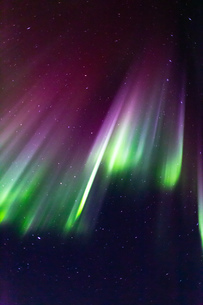 アラスカ フェアバンクスのオーロラの写真素材 [FYI04083569]
