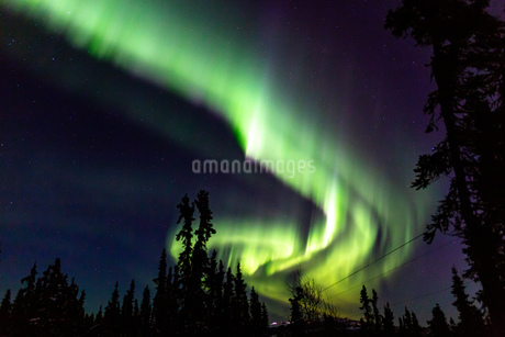 アラスカ フェアバンクスのオーロラの写真素材 [FYI04083584]