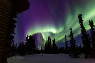 アラスカ フェアバンクスのオーロラの写真素材 [FYI04083585]