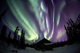 アラスカ フェアバンクスのオーロラの写真素材 [FYI04083586]