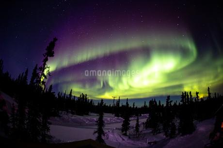 アラスカ フェアバンクスのオーロラの写真素材 [FYI04083589]