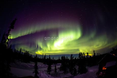 アラスカ フェアバンクスのオーロラの写真素材 [FYI04083590]
