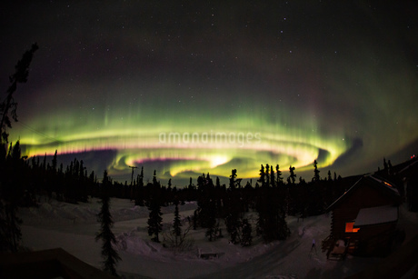 アラスカ フェアバンクスのオーロラの写真素材 [FYI04083591]