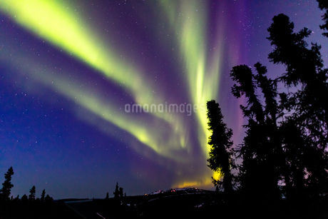 アラスカ フェアバンクスのオーロラの写真素材 [FYI04083601]
