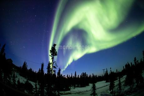 アラスカ フェアバンクスのオーロラの写真素材 [FYI04083605]