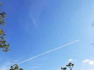 空の写真素材 [FYI04083622]