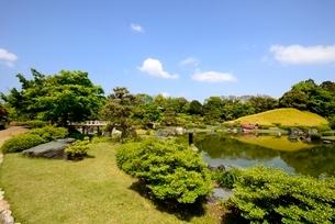 堺,新緑の大仙公園,日本庭園杜若池の写真素材 [FYI04083960]