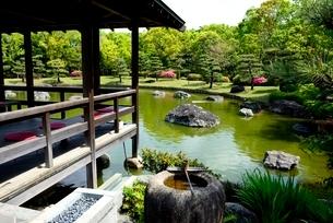 堺,新緑の大仙公園,日本庭園休憩舎の写真素材 [FYI04083971]