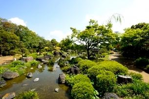 堺,新緑の大仙公園,日本庭園青苔亭の写真素材 [FYI04083982]