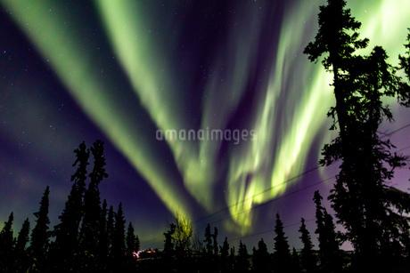 アラスカ フェアバンクスのオーロラの写真素材 [FYI04084335]