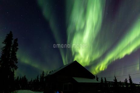 アラスカ フェアバンクスのオーロラの写真素材 [FYI04084336]