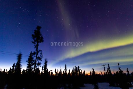 アラスカ フェアバンクスの薄暮に現れた春のオーロラの写真素材 [FYI04084338]