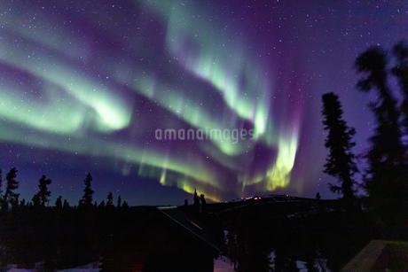 アラスカ フェアバンクスのオーロラの写真素材 [FYI04084343]