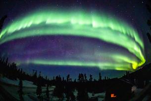 アラスカ フェアバンクスの空全体に出現したオーロラの写真素材 [FYI04084345]