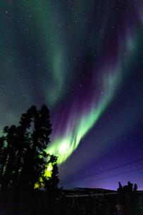 アラスカ フェアバンクスのオーロラの写真素材 [FYI04084346]