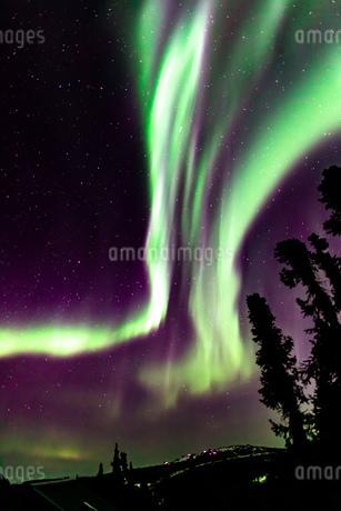 アラスカ フェアバンクスのオーロラの写真素材 [FYI04084468]