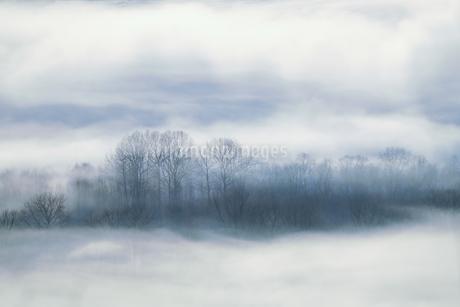 毛嵐の写真素材 [FYI04084480]