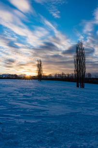 美瑛の赤羽の丘の日の出の写真素材 [FYI04084527]