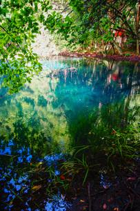 9月の丸池様の写真素材 [FYI04084675]
