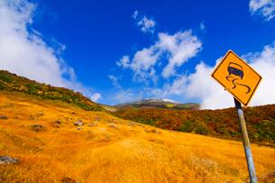 鳥海山/湯の台登山口の紅葉の写真素材 [FYI04084678]
