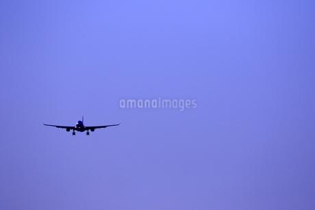 着陸する旅客機の写真素材 [FYI04084751]