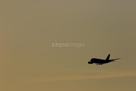 着陸する旅客機の写真素材 [FYI04084752]