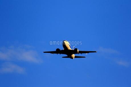 離陸機の写真素材 [FYI04084783]