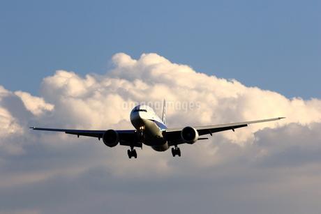 着陸態勢の旅客機の写真素材 [FYI04084807]