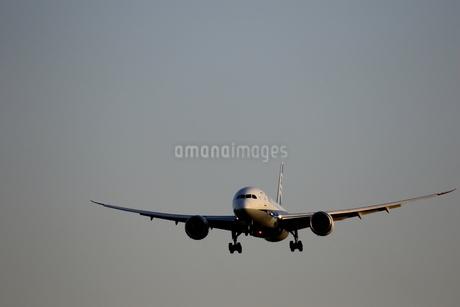 着陸態勢の旅客機の写真素材 [FYI04084812]