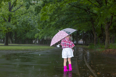 雨降りの暗い林を傘を差して歩く幼い女の子。孤独、虐待、一人ぼっちイメージの写真素材 [FYI04085007]