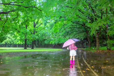 雨降りの明るい公園を傘を差して歩く幼い女の子。孤独、虐待、一人ぼっちイメージの写真素材 [FYI04085008]