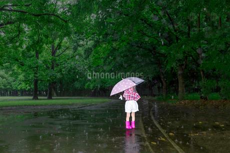 雨降りの暗い林を傘を差して歩く幼い女の子。孤独、虐待、一人ぼっちイメージの写真素材 [FYI04085009]