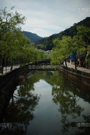 城崎温泉の町並みの写真素材 [FYI04085165]