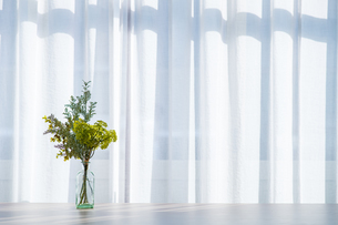 Bouquet in vase decorated near white curtain.  Modern lifestyle concept.の写真素材 [FYI04085269]