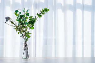 Bouquet in vase decorated near white curtain.  Modern lifestyle concept.の写真素材 [FYI04085271]