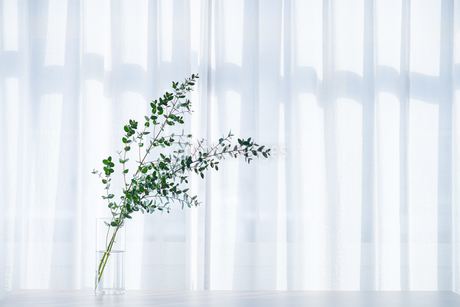Bouquet in vase decorated near white curtain.  Modern lifestyle concept.の写真素材 [FYI04085273]
