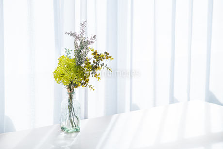 Bouquet in vase decorated near white curtain.  Modern lifestyle concept.の写真素材 [FYI04085275]