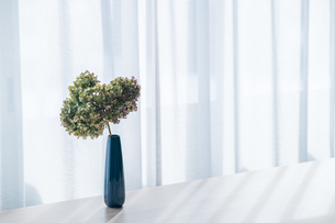 Bouquet in vase decorated near white curtain.  Modern lifestyle concept.の写真素材 [FYI04085276]