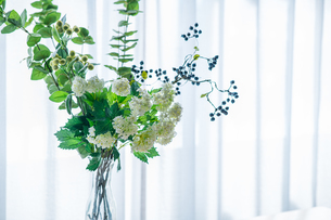 Bouquet in vase decorated near white curtain.  Modern lifestyle concept.の写真素材 [FYI04085277]
