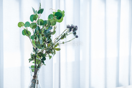 Bouquet in vase decorated near white curtain.  Modern lifestyle concept.の写真素材 [FYI04085278]