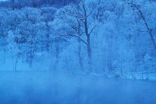 鳥沼公園の樹氷とけあらしの写真素材 [FYI04085430]