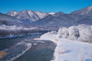 空知川と樹氷の写真素材 [FYI04085441]