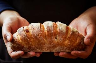 パンの写真素材 [FYI04085667]