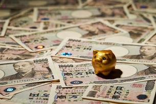 豚の置物と一万円札の写真素材 [FYI04085716]