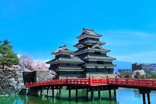 松本城とサクラに埋橋の写真素材 [FYI04085786]