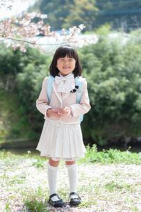 正装して笑う新一年生の女の子の写真素材 [FYI04085902]
