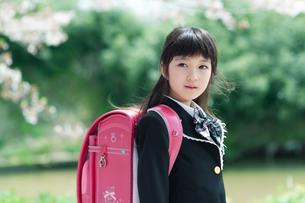 正装して微笑む新一年生の女の子の写真素材 [FYI04085912]