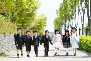 住宅街で並んで歩く正装した新一年生の写真素材 [FYI04085925]